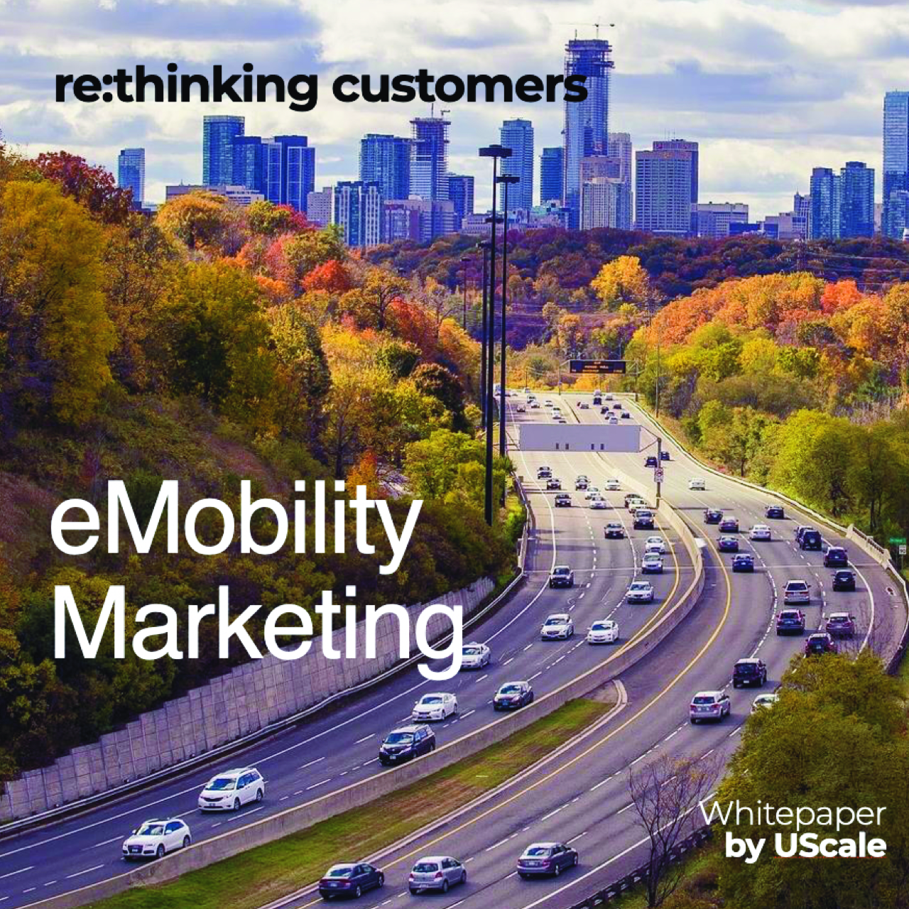 WhitePaper on marketing products and services in eMobility